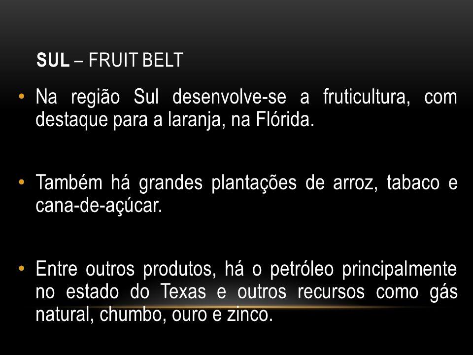 SUL – FRUIT BELT Na região Sul desenvolve-se a fruticultura, com destaque para a laranja, na Flórida. Também há grandes plantações de arroz, tabaco e