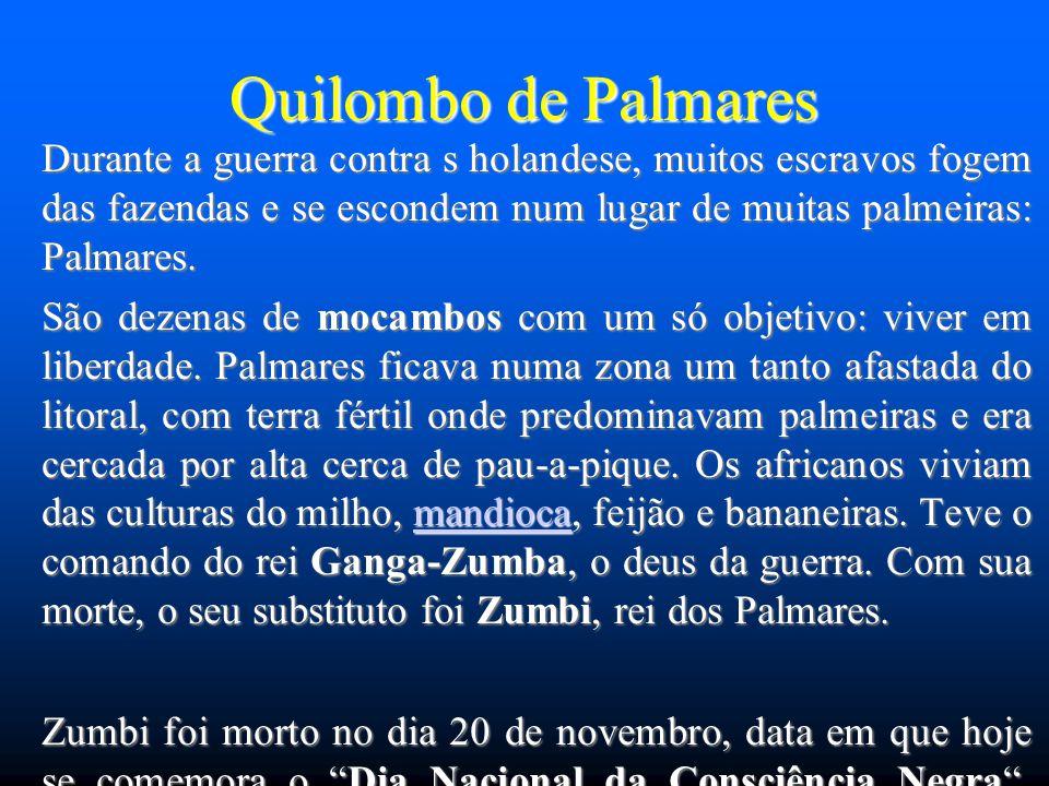 Quilombo de Palmares Durante a guerra contra s holandese, muitos escravos fogem das fazendas e se escondem num lugar de muitas palmeiras: Palmares. Sã