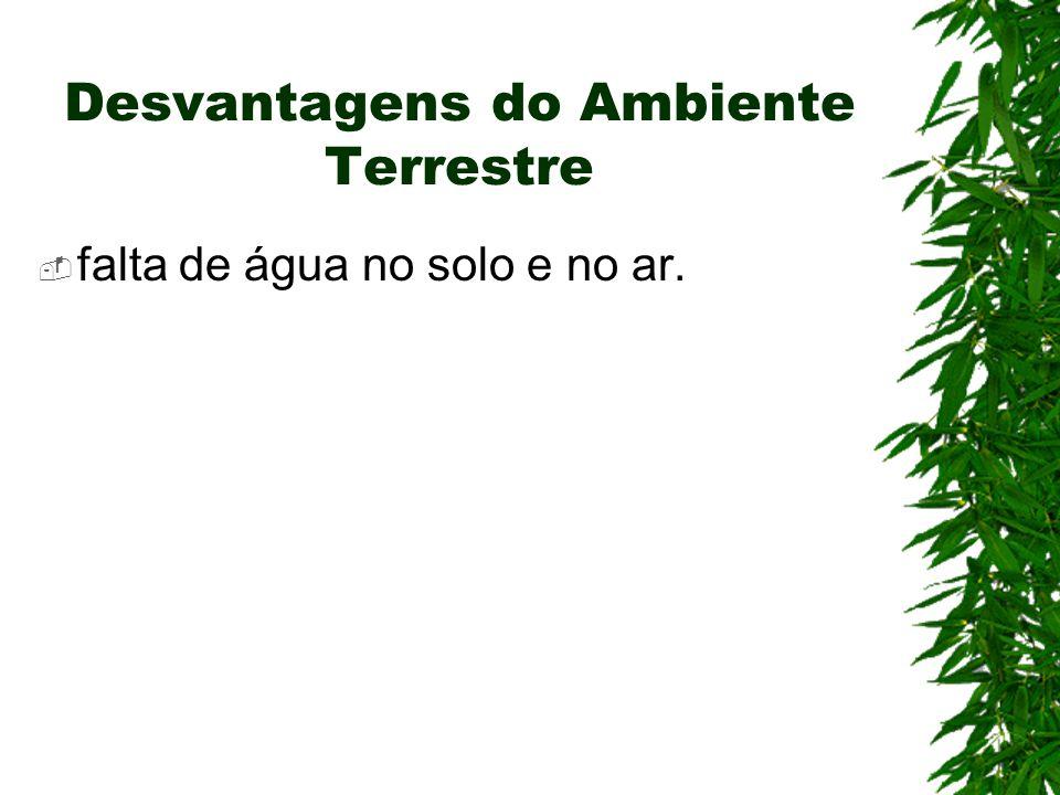 Desvantagens do Ambiente Terrestre falta de água no solo e no ar.