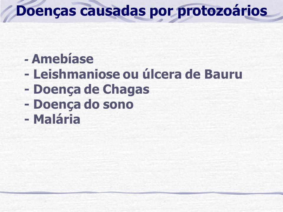 - Amebíase - Leishmaniose ou úlcera de Bauru - Doença de Chagas - Doença do sono - Malária Doenças causadas por protozoários
