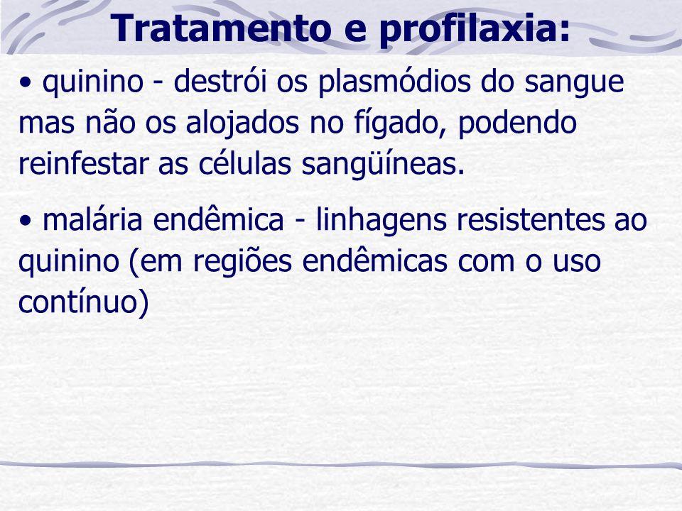 quinino - destrói os plasmódios do sangue mas não os alojados no fígado, podendo reinfestar as células sangüíneas. malária endêmica - linhagens resist