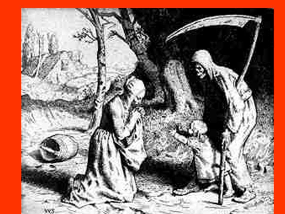 Consequências das Cruzadas Incentivo ao comércio entre Ocidente e Oriente.