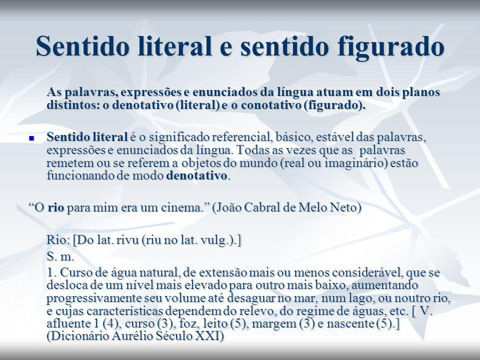 Sentido literal e sentido figurado As palavras, expressões e enunciados da língua atuam em dois planos distintos: o denotativo (literal) e o conotativ