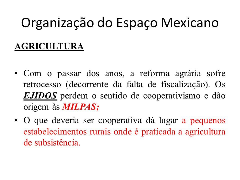 Organização do Espaço Mexicano AGRICULTURA Com o passar dos anos, a reforma agrária sofre retrocesso (decorrente da falta de fiscalização). Os EJIDOS