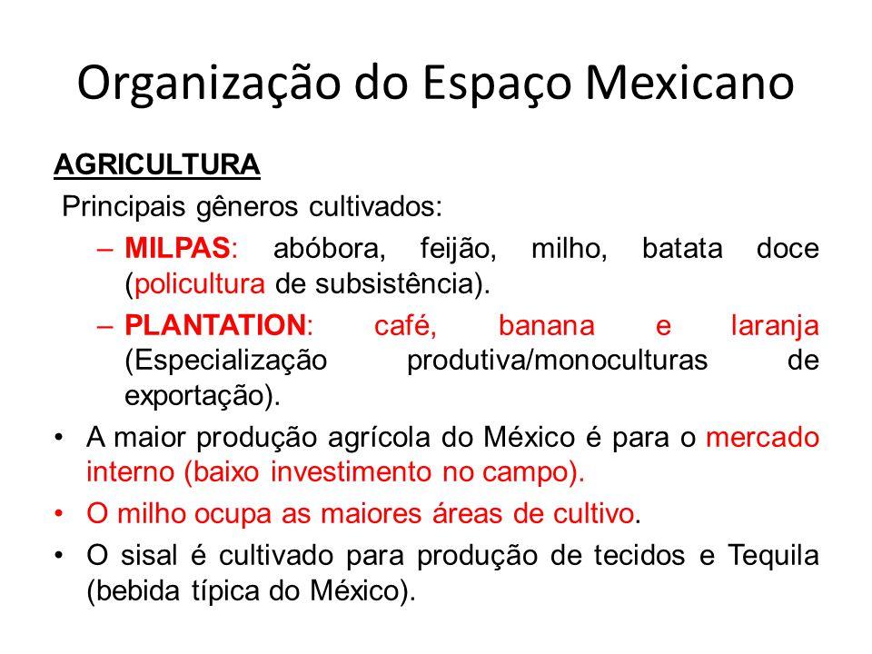 Organização do Espaço Mexicano AGRICULTURA Principais gêneros cultivados: –MILPAS: abóbora, feijão, milho, batata doce (policultura de subsistência).