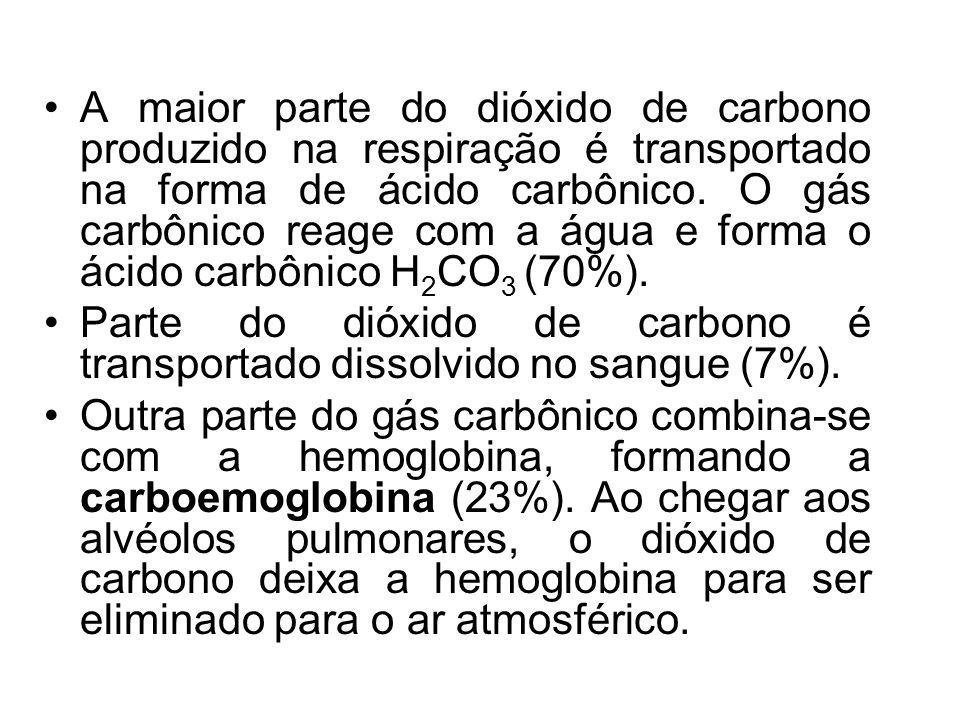 A maior parte do dióxido de carbono produzido na respiração é transportado na forma de ácido carbônico. O gás carbônico reage com a água e forma o áci