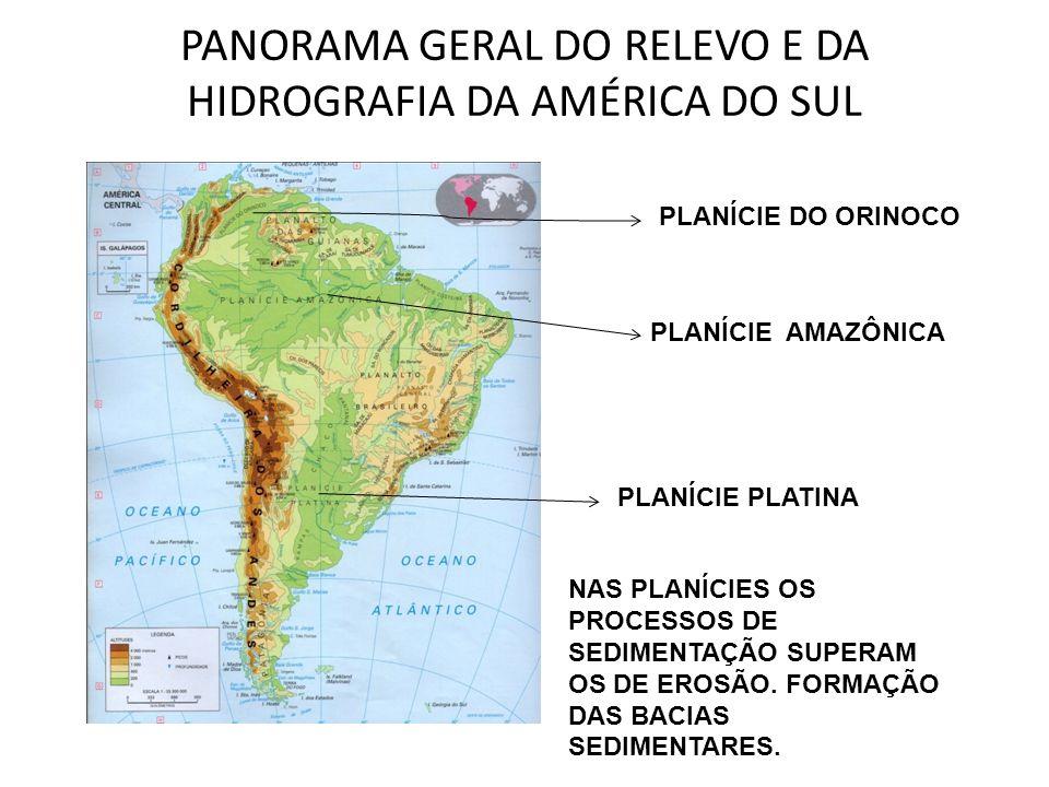 PANORAMA GERAL DO RELEVO E DA HIDROGRAFIA DA AMÉRICA DO SUL PLANÍCIE AMAZÔNICA PLANÍCIE PLATINA PLANÍCIE DO ORINOCO NAS PLANÍCIES OS PROCESSOS DE SEDI