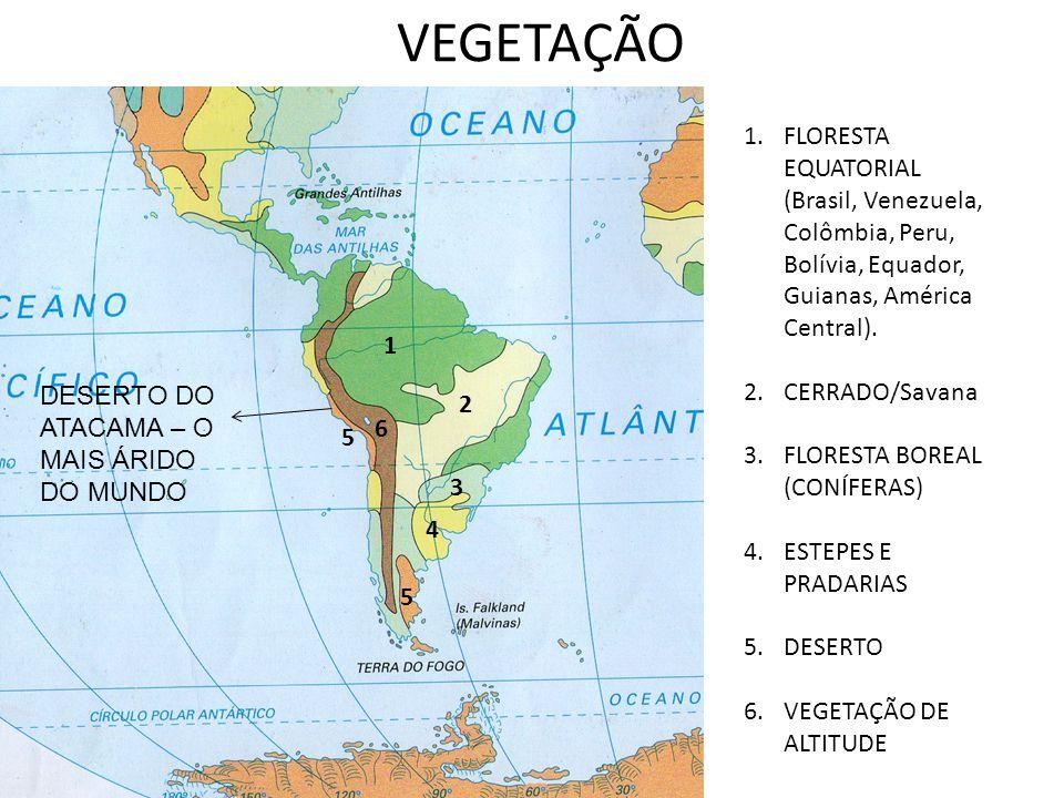 VEGETAÇÃO 1 2 3 4 5 6 1.FLORESTA EQUATORIAL (Brasil, Venezuela, Colômbia, Peru, Bolívia, Equador, Guianas, América Central). 2.CERRADO/Savana 3.FLORES
