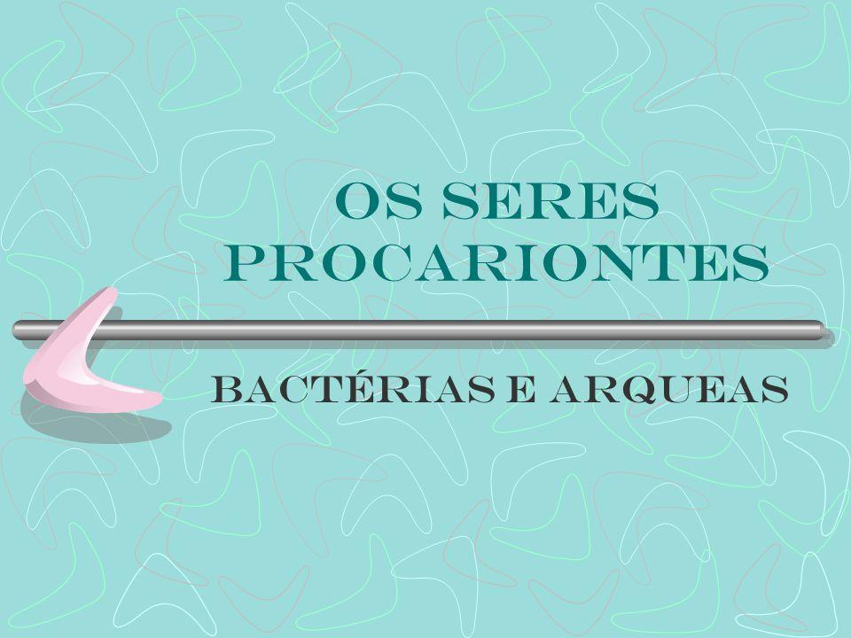 Os seres procariontes Bactérias e Arqueas