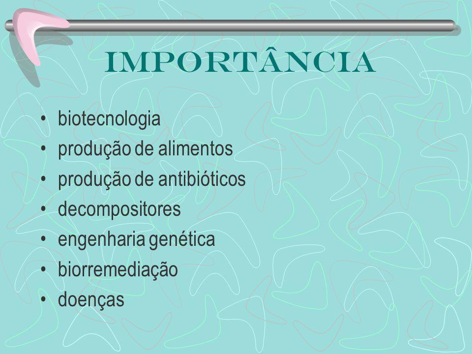 Importância biotecnologia produção de alimentos produção de antibióticos decompositores engenharia genética biorremediação doenças