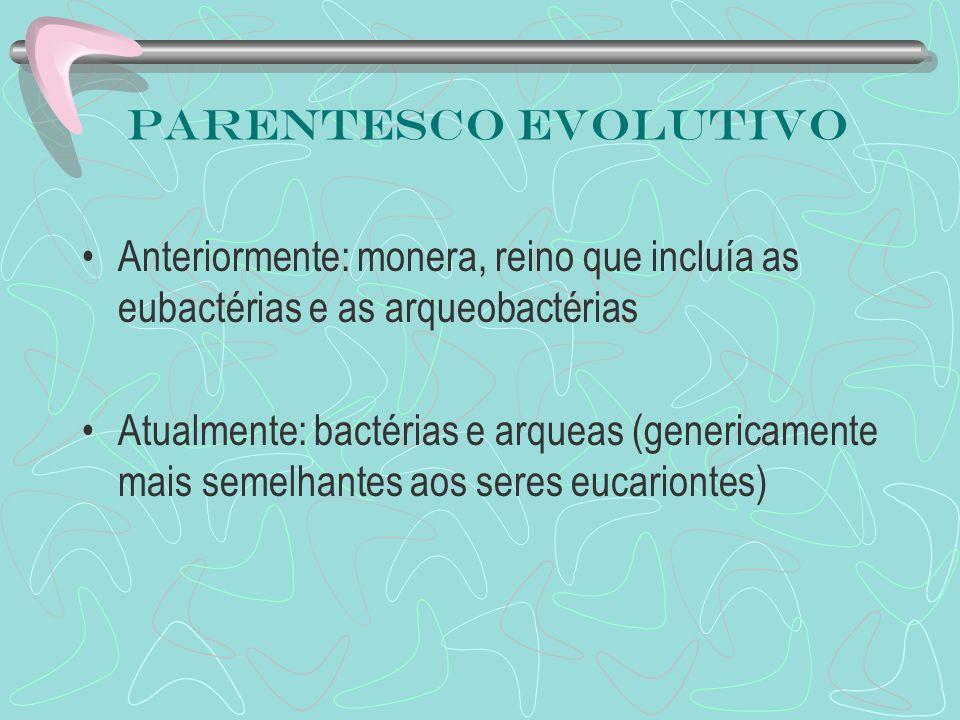 Parentesco evolutivo Anteriormente: monera, reino que incluía as eubactérias e as arqueobactérias Atualmente: bactérias e arqueas (genericamente mais