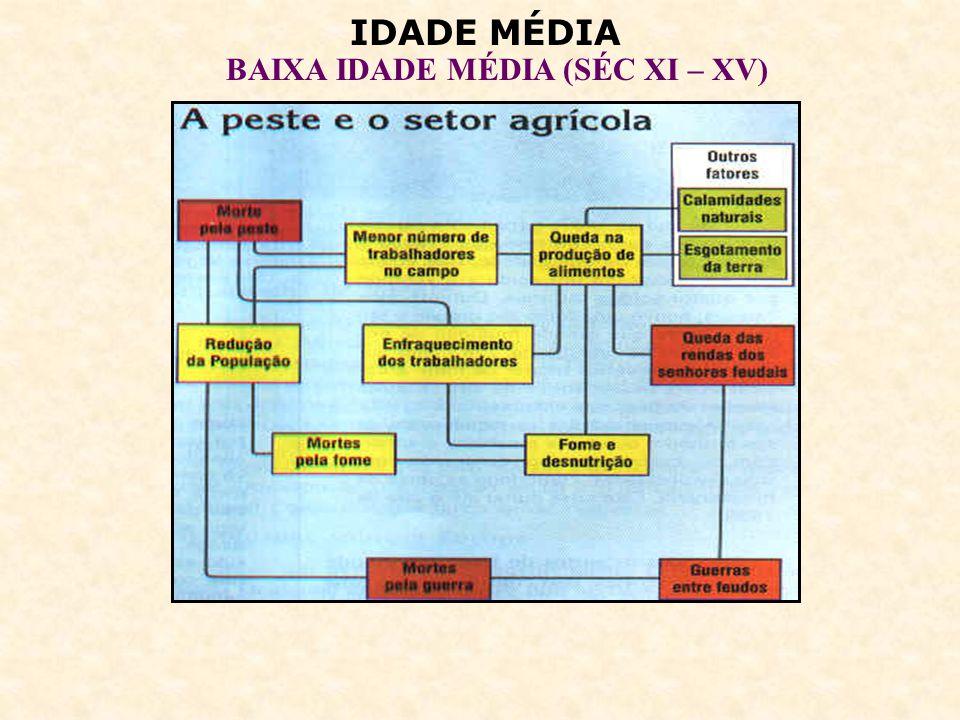IDADE MÉDIA BAIXA IDADE MÉDIA (SÉC XI – XV) JACQUERIES – rebeliões camponesas.