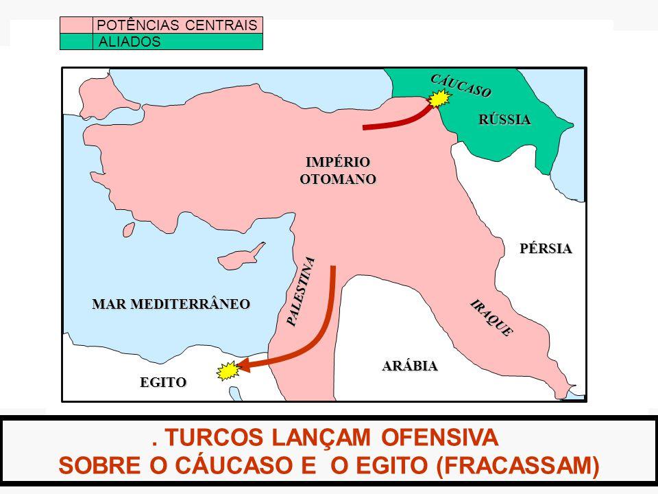 . TURCOS LANÇAM OFENSIVA SOBRE O CÁUCASO E O EGITO (FRACASSAM) POTÊNCIAS CENTRAIS ALIADOS IMPÉRIOOTOMANO MAR MEDITERRÂNEO EGITO ARÁBIA PÉRSIA RÚSSIA IRAQUE PALESTINA CÁUCASO