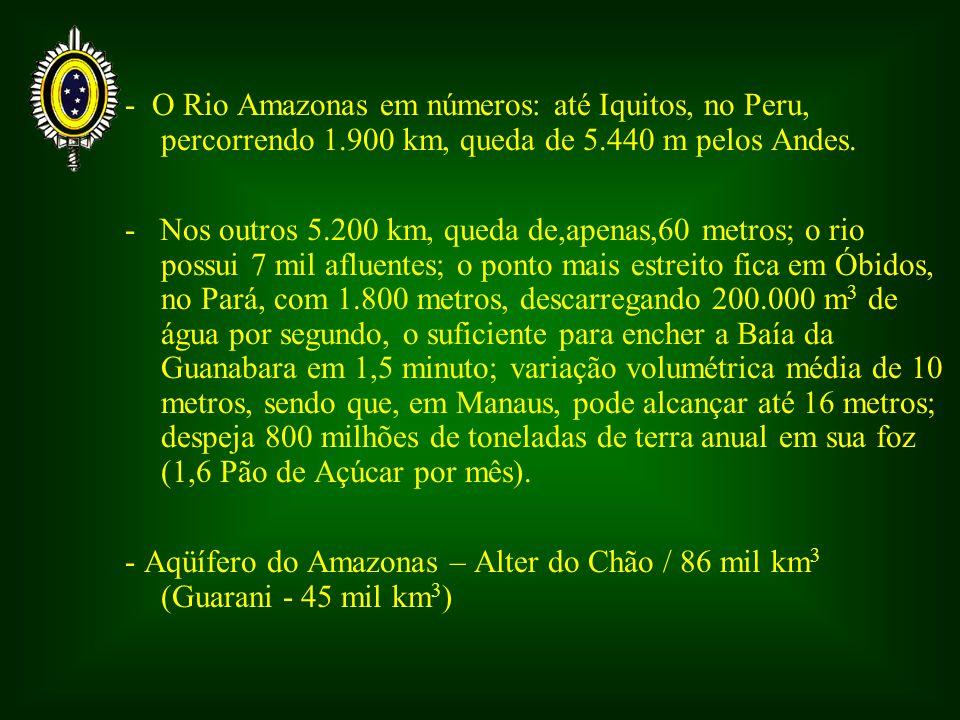 - O Rio Amazonas em números: até Iquitos, no Peru, percorrendo 1.900 km, queda de 5.440 m pelos Andes. - Nos outros 5.200 km, queda de,apenas,60 metro
