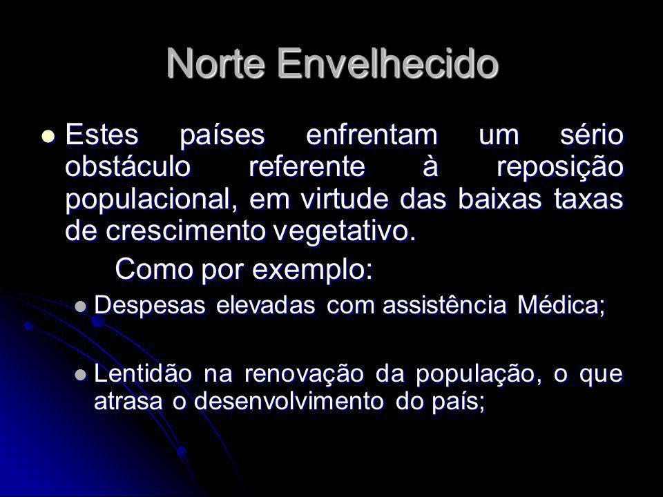 Norte Envelhecido Estes países enfrentam um sério obstáculo referente à reposição populacional, em virtude das baixas taxas de crescimento vegetativo.