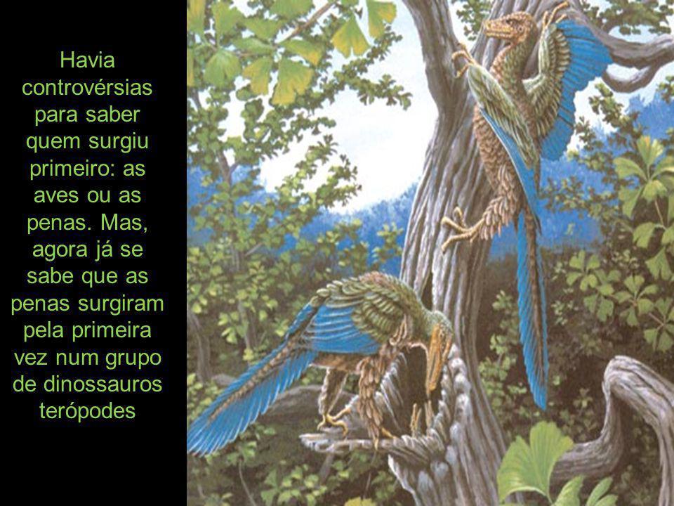 e diversificaram- se em variedades essencialmente modernas, de outras linhagens de terópodes, anteriores à origem dos pássaros.