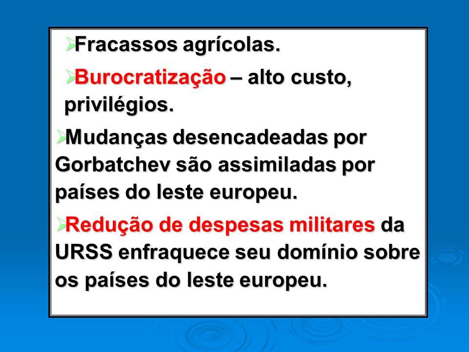 Fracassos agrícolas. Fracassos agrícolas. Burocratização – alto custo, privilégios. Burocratização – alto custo, privilégios. Mudanças desencadeadas p