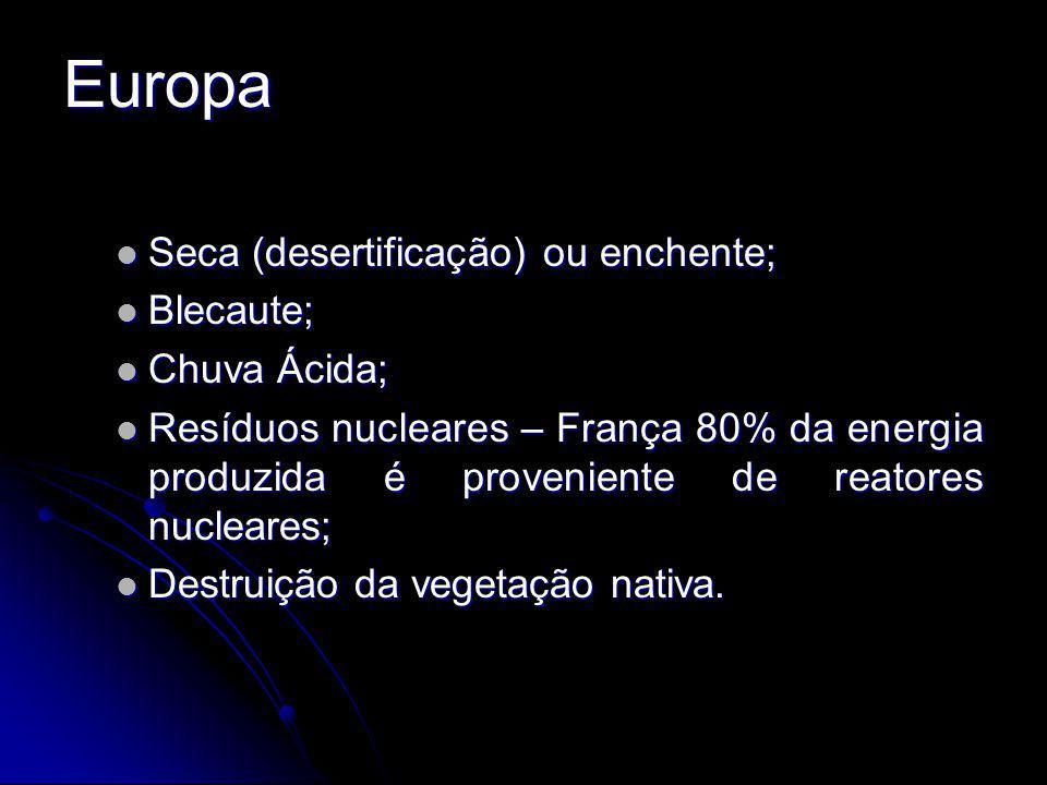 Europa Seca (desertificação) ou enchente; Seca (desertificação) ou enchente; Blecaute; Blecaute; Chuva Ácida; Chuva Ácida; Resíduos nucleares – França 80% da energia produzida é proveniente de reatores nucleares; Resíduos nucleares – França 80% da energia produzida é proveniente de reatores nucleares; Destruição da vegetação nativa.