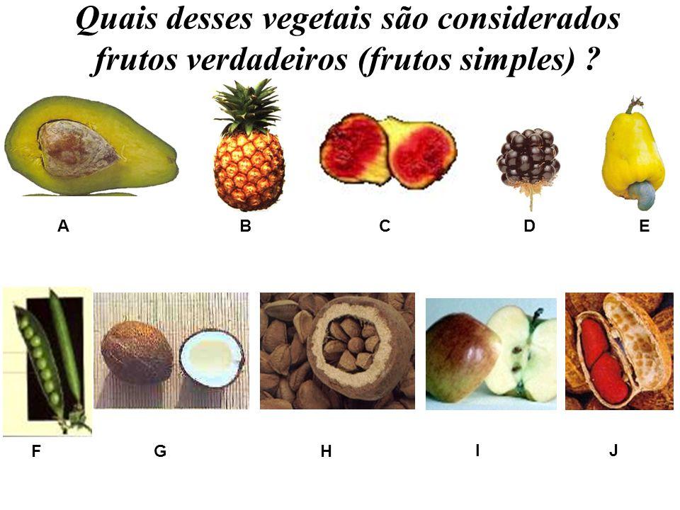 Quais desses vegetais são considerados frutos verdadeiros (frutos simples) ? A B C DE FGH IJ