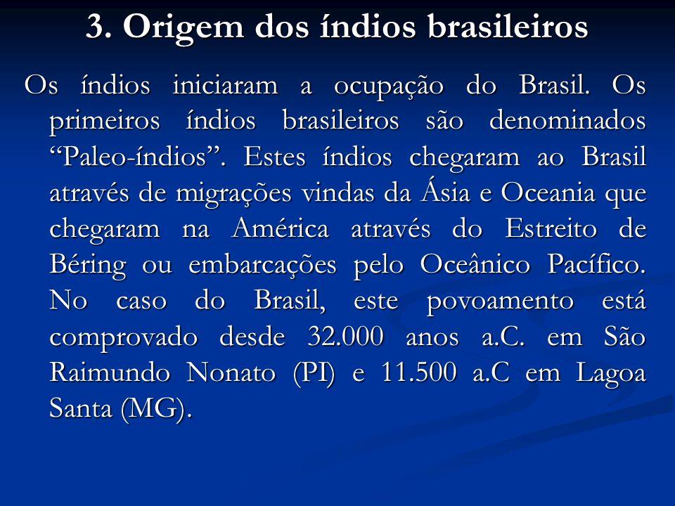 3. Origem dos índios brasileiros Os índios iniciaram a ocupação do Brasil. Os primeiros índios brasileiros são denominados Paleo-índios. Estes índios