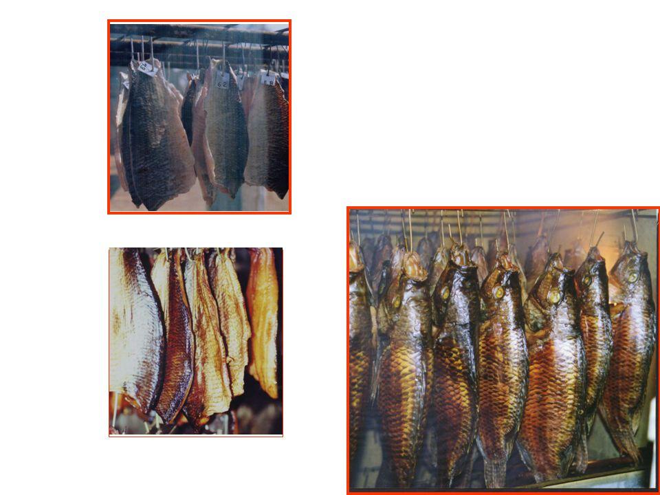 8.1) Espécies de peixes com possibilidades para a defumação 8.