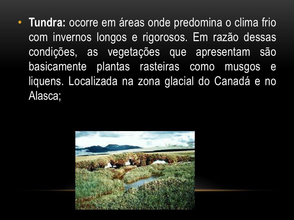 Tundra: ocorre em áreas onde predomina o clima frio com invernos longos e rigorosos. Em razão dessas condições, as vegetações que apresentam são basic