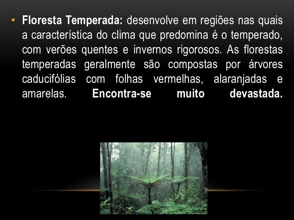 Floresta Temperada: desenvolve em regiões nas quais a característica do clima que predomina é o temperado, com verões quentes e invernos rigorosos. As