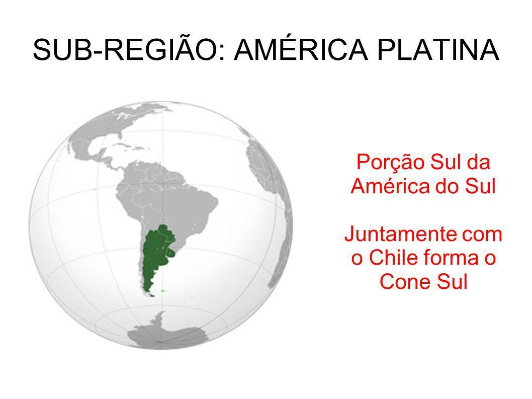 SUB-REGIÃO: AMÉRICA PLATINA Porção Sul da América do Sul Juntamente com o Chile forma o Cone Sul