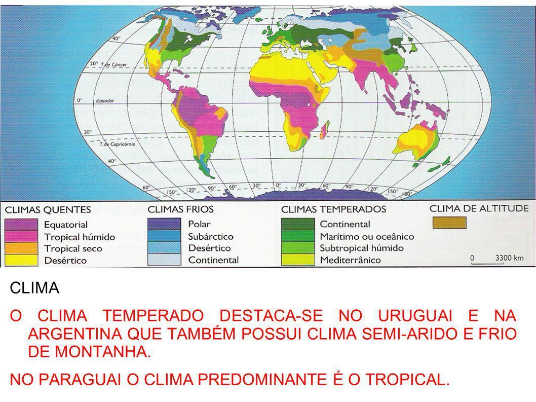 TERRENO POUCO ONDULADO (COXILHAS), COM SOLOS FÉRTEIS, CLIMA TEMPERADO E ÚMIDO, VEGETAÇÃO HERBÁCEA (PRADARIAS) PROPÍCIO À PECUÁRIA E AGRICULTURA.