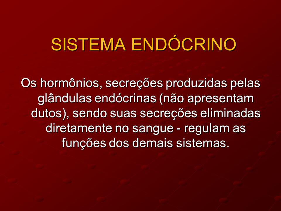 SISTEMA ENDÓCRINO Os hormônios, secreções produzidas pelas glândulas endócrinas (não apresentam dutos), sendo suas secreções eliminadas diretamente no sangue - regulam as funções dos demais sistemas.