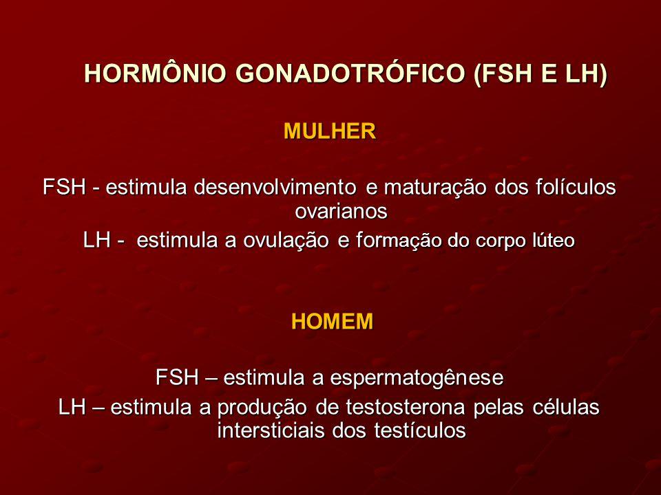 HORMÔNIO GONADOTRÓFICO (FSH E LH) MULHER FSH - estimula desenvolvimento e maturação dos folículos ovarianos LH - estimula a ovulação e for mação do corpo lúteo HOMEM HOMEM FSH – estimula a espermatogênese LH – estimula a produção de testosterona pelas células intersticiais dos testículos