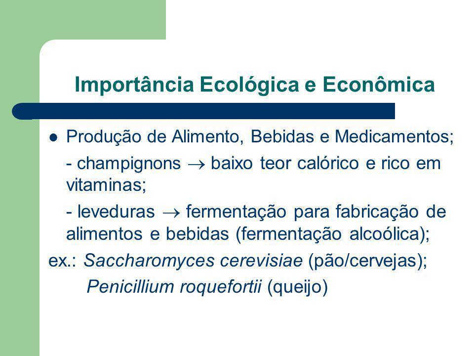 Importância Ecológica e Econômica Produção de Alimento, Bebidas e Medicamentos; - champignons baixo teor calórico e rico em vitaminas; - leveduras fer