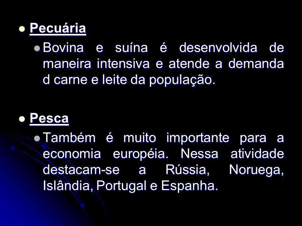 Pecuária Pecuária Bovina e suína é desenvolvida de maneira intensiva e atende a demanda d carne e leite da população.