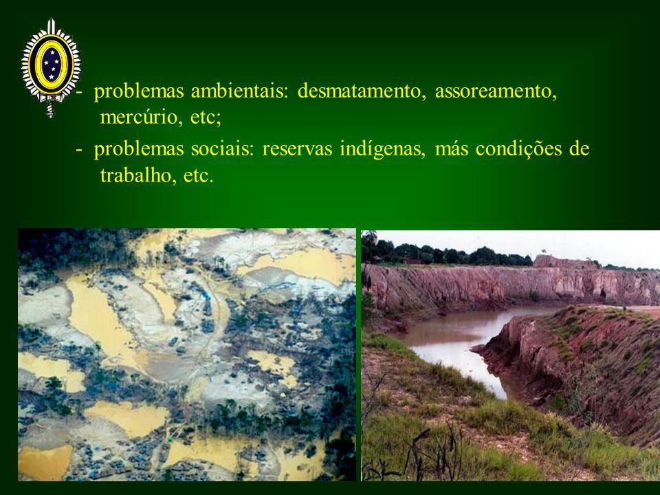 - problemas ambientais: desmatamento, assoreamento, mercúrio, etc; - problemas sociais: reservas indígenas, más condições de trabalho, etc.