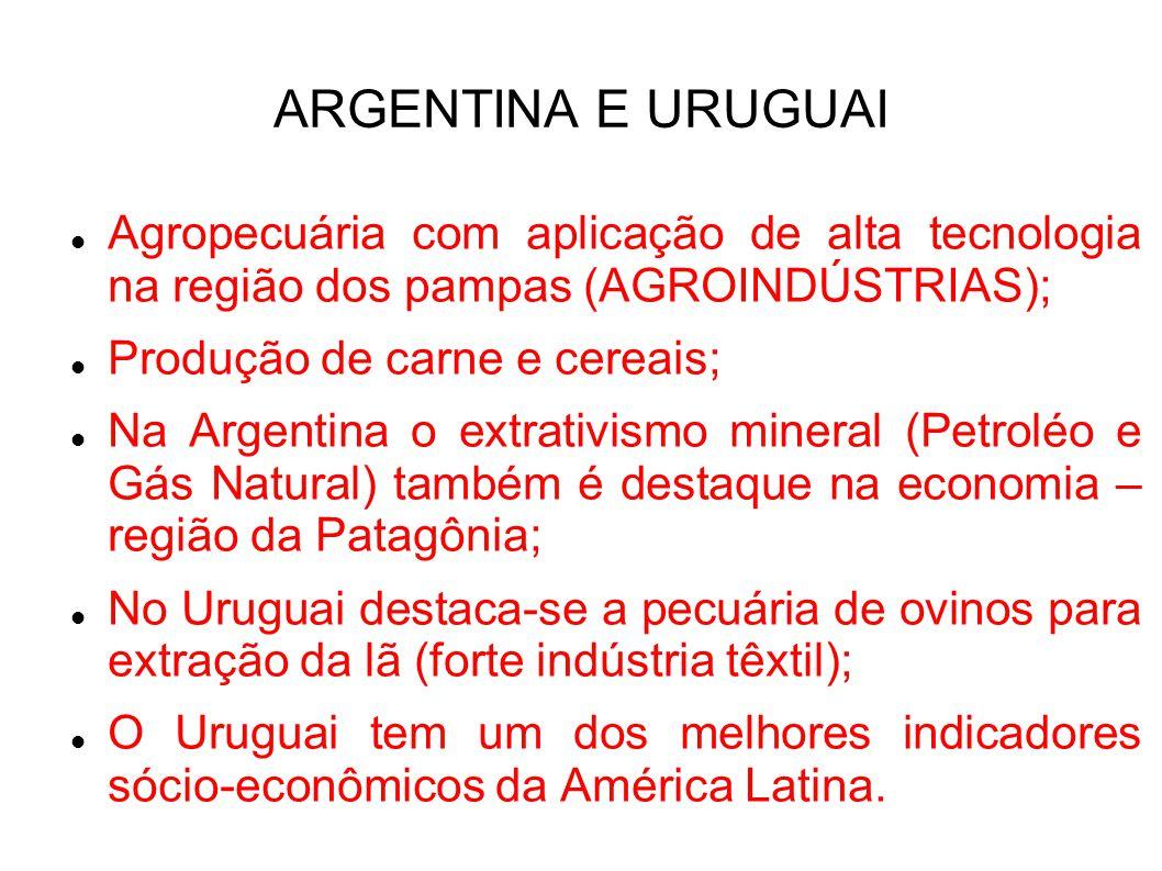 ARGENTINA E URUGUAI Agropecuária com aplicação de alta tecnologia na região dos pampas (AGROINDÚSTRIAS); Produção de carne e cereais; Na Argentina o e