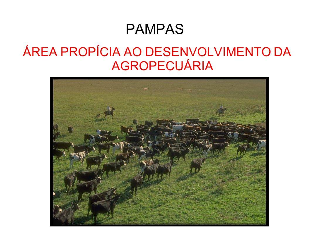 ÁREA PROPÍCIA AO DESENVOLVIMENTO DA AGROPECUÁRIA (Paraguai não está incluso) PAMPAS