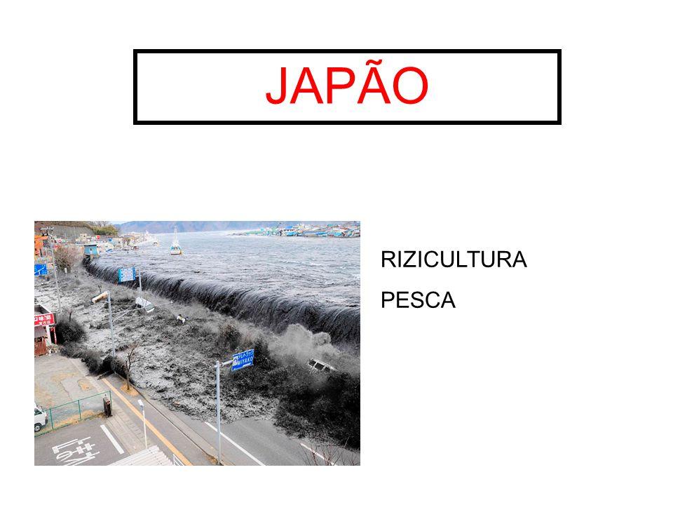 JAPÃO RIZICULTURA PESCA