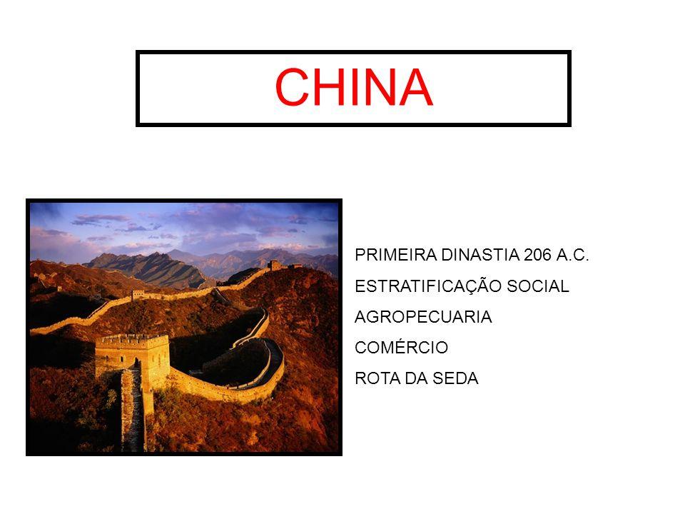 CHINA PRIMEIRA DINASTIA 206 A.C. ESTRATIFICAÇÃO SOCIAL AGROPECUARIA COMÉRCIO ROTA DA SEDA