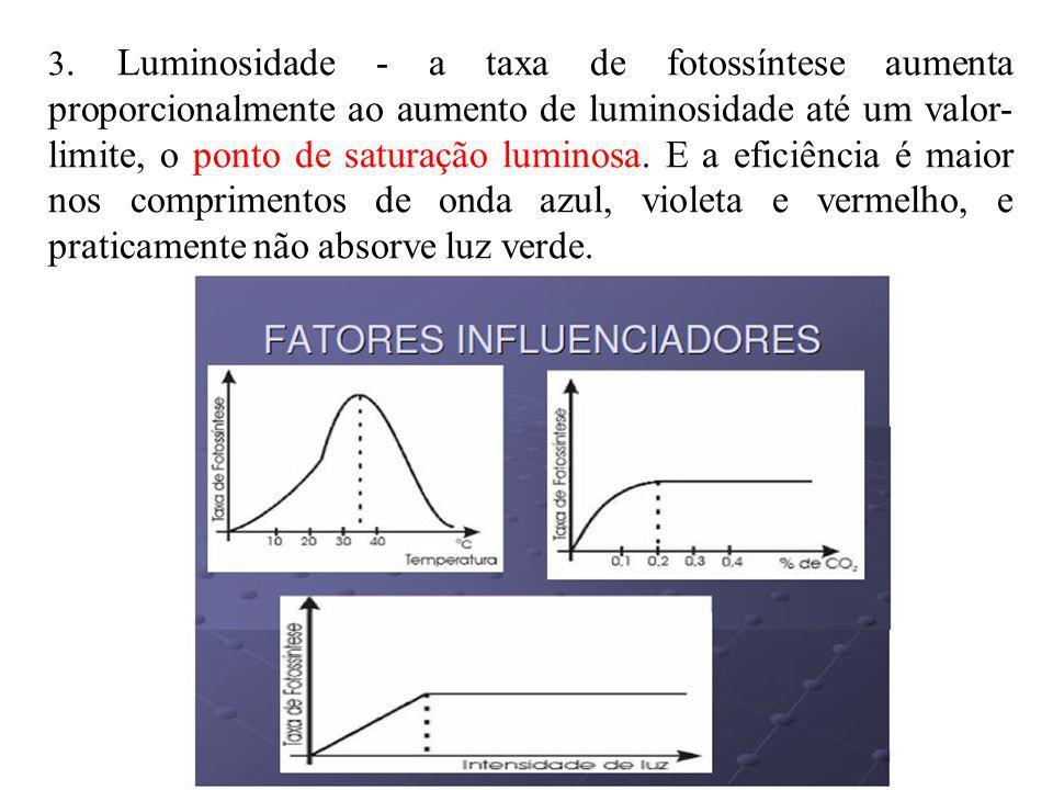 3. Luminosidade - a taxa de fotossíntese aumenta proporcionalmente ao aumento de luminosidade até um valor- limite, o ponto de saturação luminosa. E a