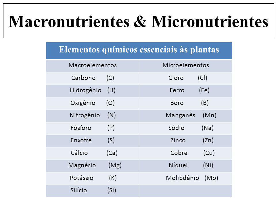 Elementos químicos essenciais às plantas MacroelementosMicroelementos Carbono (C) Cloro (Cl) Hidrogênio (H) Ferro (Fe) Oxigênio (O) Boro (B) Nitrogêni