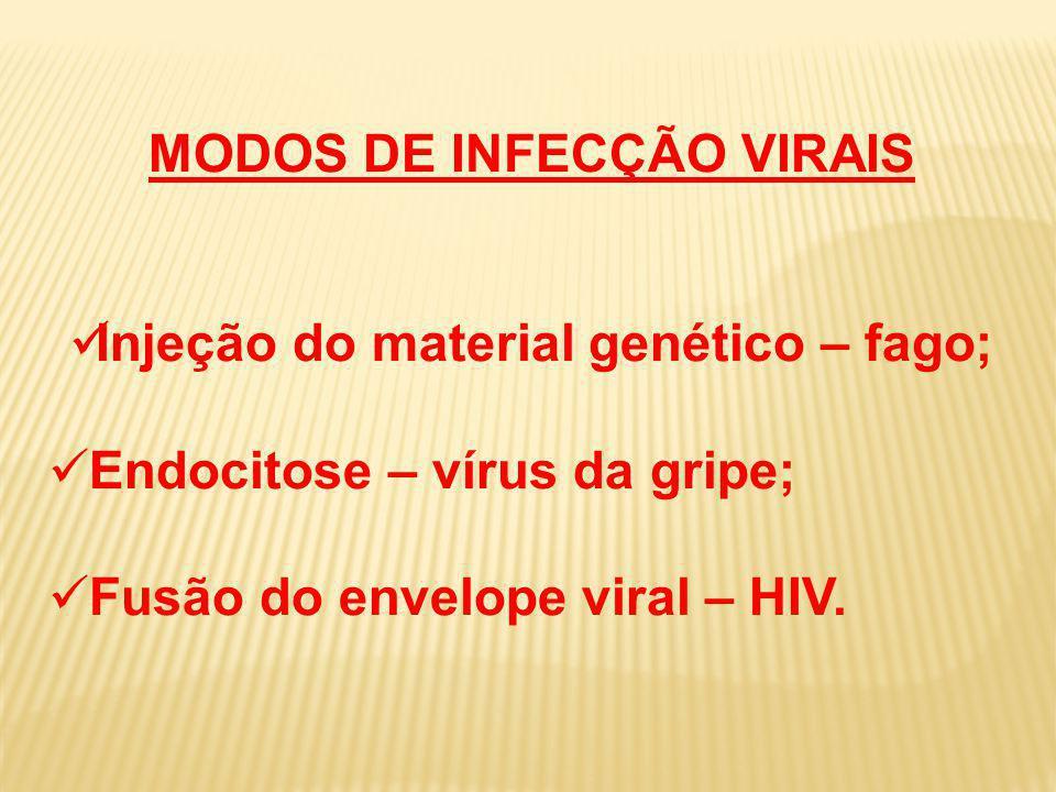 MODOS DE INFECÇÃO VIRAIS Injeção do material genético – fago; Endocitose – vírus da gripe; Fusão do envelope viral – HIV.