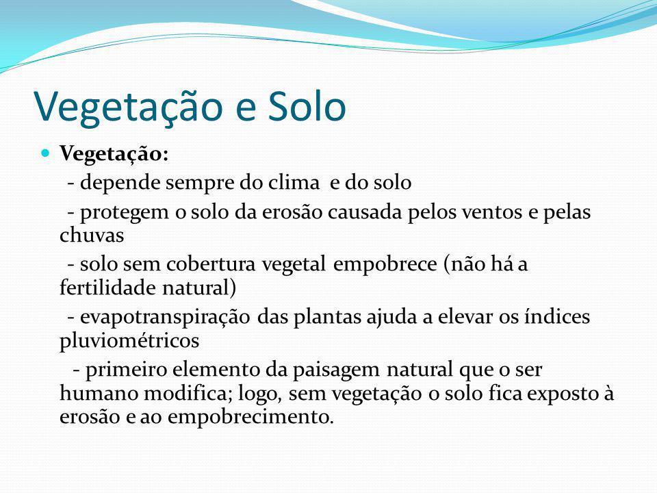 Vegetação e Solo Vegetação: - depende sempre do clima e do solo - protegem o solo da erosão causada pelos ventos e pelas chuvas - solo sem cobertura v