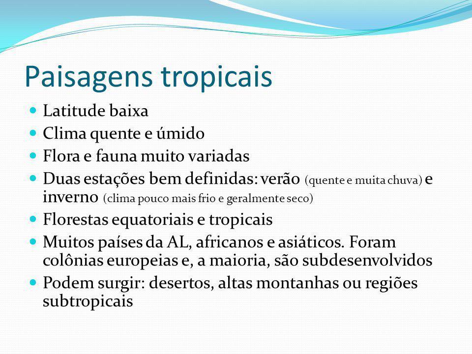 Paisagens tropicais Latitude baixa Clima quente e úmido Flora e fauna muito variadas Duas estações bem definidas: verão (quente e muita chuva) e inver