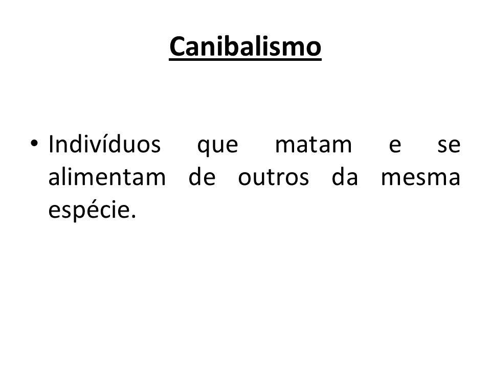 Canibalismo Indivíduos que matam e se alimentam de outros da mesma espécie.