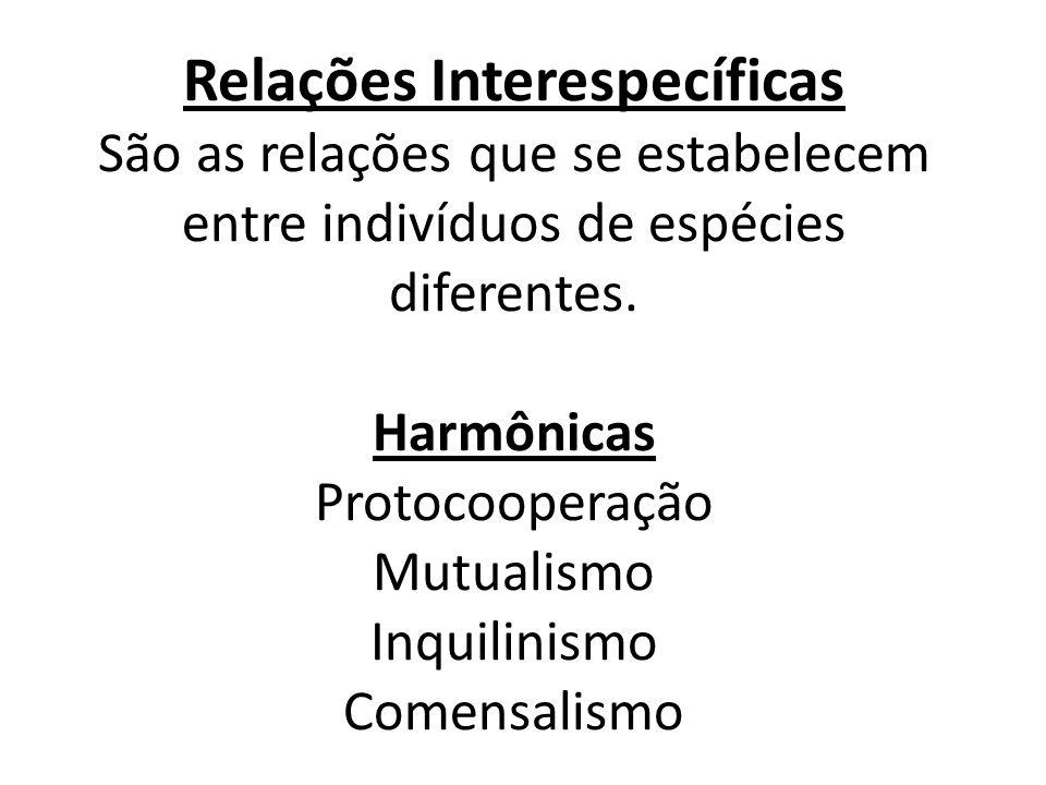 Relações Interespecíficas São as relações que se estabelecem entre indivíduos de espécies diferentes. Harmônicas Protocooperação Mutualismo Inquilinis