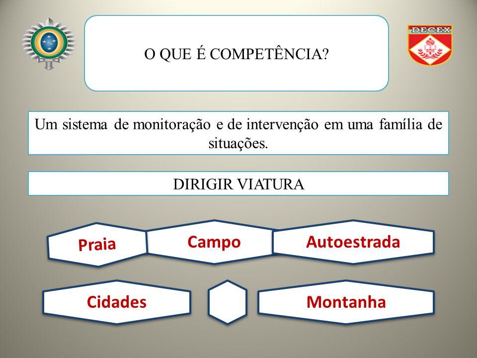 O QUE É COMPETÊNCIA.Um sistema de monitoração e de intervenção em uma família de situações.