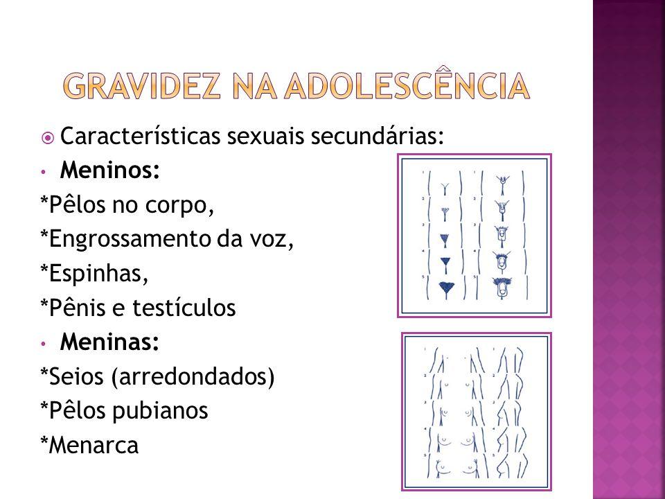 Características sexuais secundárias: Meninos: *Pêlos no corpo, *Engrossamento da voz, *Espinhas, *Pênis e testículos Meninas: *Seios (arredondados) *P