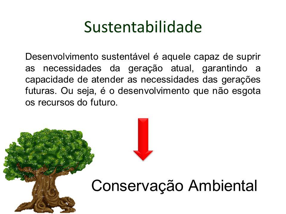 Sustentabilidade Desenvolvimento sustentável é aquele capaz de suprir as necessidades da geração atual, garantindo a capacidade de atender as necessid