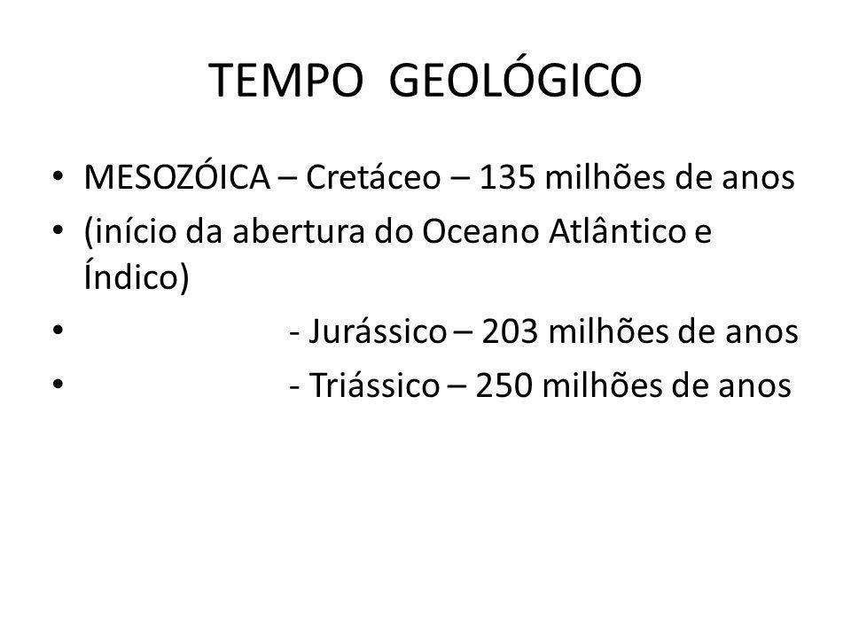 TEMPO GEOLÓGICO MESOZÓICA – Cretáceo – 135 milhões de anos (início da abertura do Oceano Atlântico e Índico) - Jurássico – 203 milhões de anos - Triás