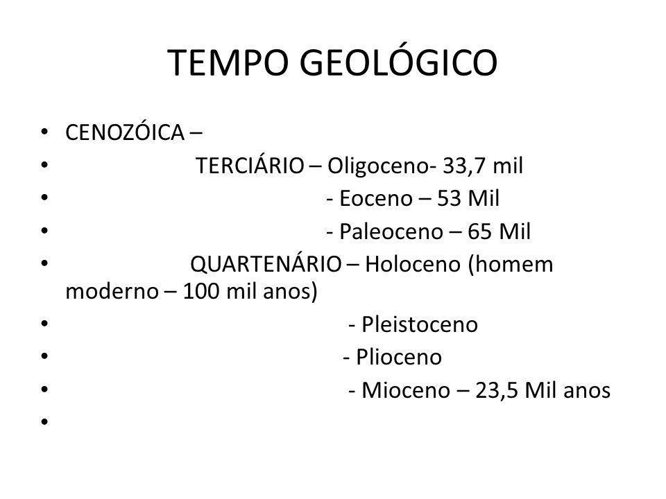 TEMPO GEOLÓGICO CENOZÓICA – TERCIÁRIO – Oligoceno- 33,7 mil - Eoceno – 53 Mil - Paleoceno – 65 Mil QUARTENÁRIO – Holoceno (homem moderno – 100 mil anos) - Pleistoceno - Plioceno - Mioceno – 23,5 Mil anos